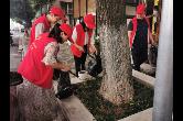 """石門縣自然資源局:開展""""迎端午""""美化環境志愿服務"""