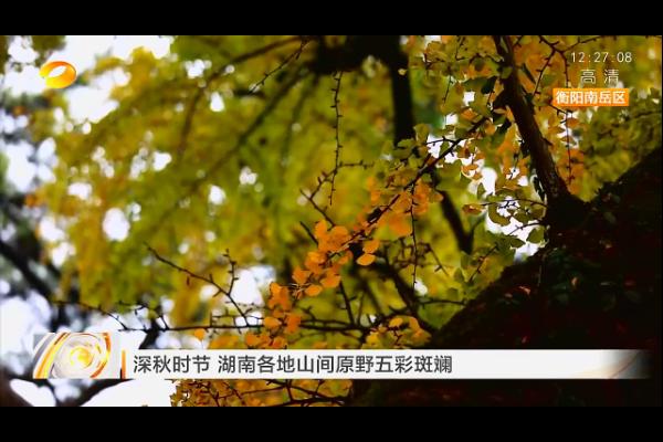 【湖南卫视】深秋时节 湖南各地山间原野五彩斑斓