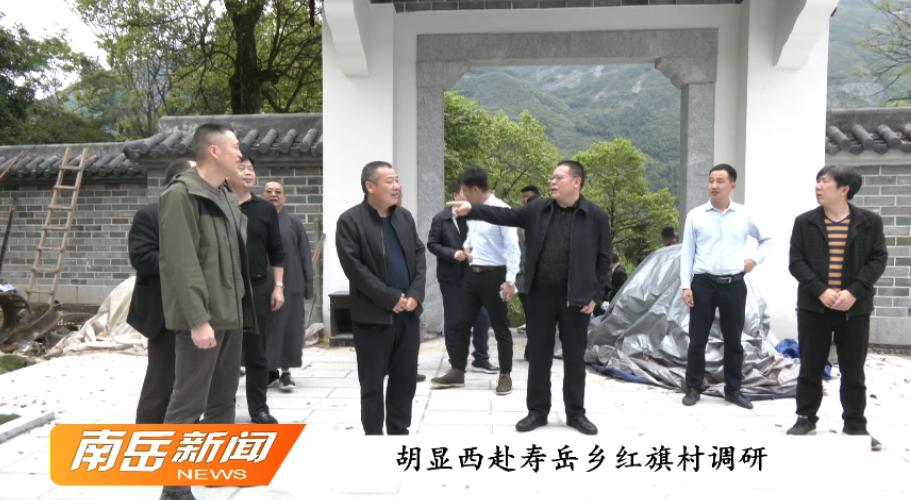 胡显西赴寿岳乡红旗村调研