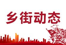 """""""消除事故隐患,筑牢安全防线"""" 东阳渡街道召开""""安全生产月""""工作研讨会"""