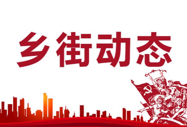 【东阳渡街道】新华社区开展垃圾清理志愿服务活动