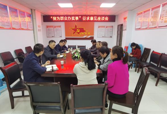 """区领导在凤凰村社区主持召开""""我为群众办实事""""征求意见座谈会"""