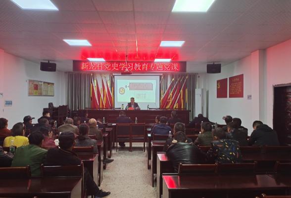 区领导到新龙村开展党史学习教育专题党课