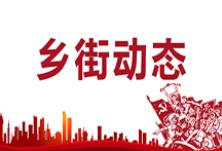 酃湖乡召开创文创卫迎检冲刺动员会