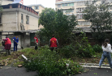 新华社区居民自发开展卫生清理志愿活动,共建美好家园