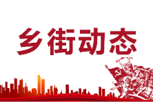 酃湖乡组织学习《中国共产党政法工作条例》