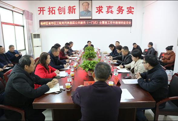 我区组织省、市、区三级党代表开展专题调研活动