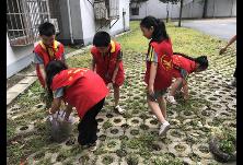"""湖北路小学开展""""衡阳群众在行动""""学雷锋志愿服务活动"""