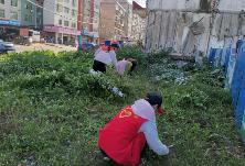 一六村社区组织志愿者开展违规菜地清除工作