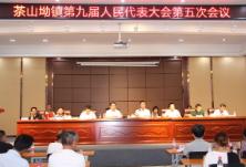 茶山坳镇召开第九届人民代表大会第五次会议