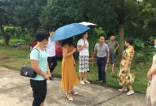 区领导调研酃湖乡社会救助工作