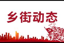 东阳渡街道召开上半年安全生产总结部署会