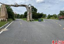 """四好农村路丨珠晖:打响通村公路建设第一枪,""""边界路""""""""断头路""""已成历史"""