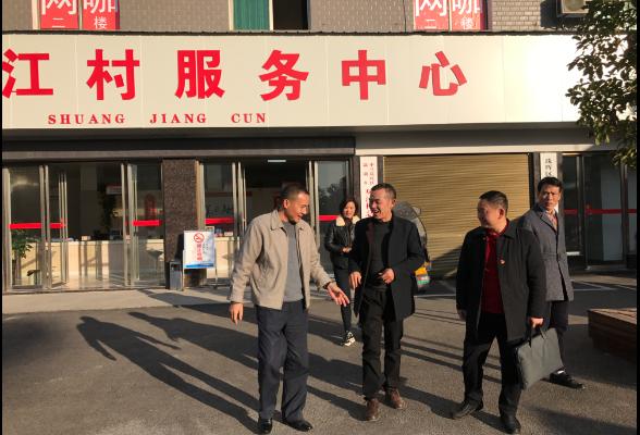 """区领导调研酃湖乡双江村""""两委""""换届选举工作"""