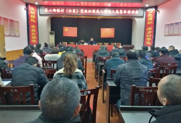 茶山坳镇召开村(社区)党组织候选人预备人选集体谈话会