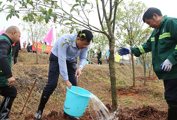刘桢干率队参加义务植树