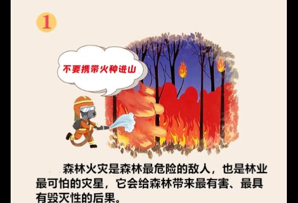 """图说森林防火知识丨野外火源管理""""十不要"""",请牢记!"""