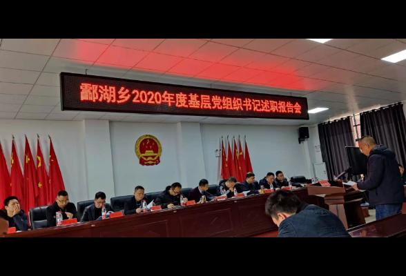 酃湖乡组织开展2020年度基层党组织书记述职报告会