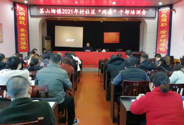 茶山坳镇召开2021年村社区两委干部培训会