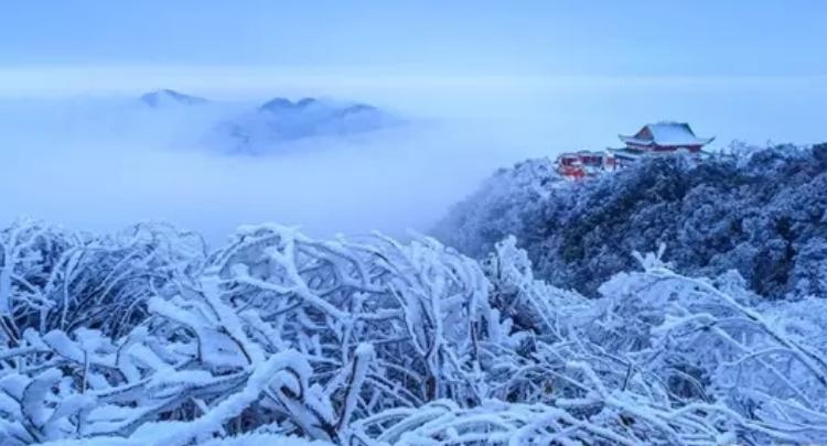 【美丽宜章】莽山雪韵