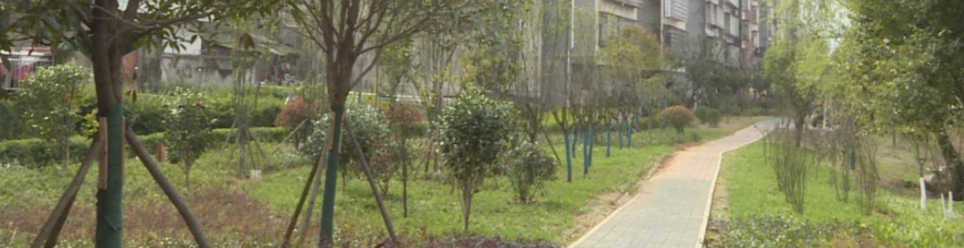 人民更幸福城市更美丽  沅江市积极推进文明卫生城市建设