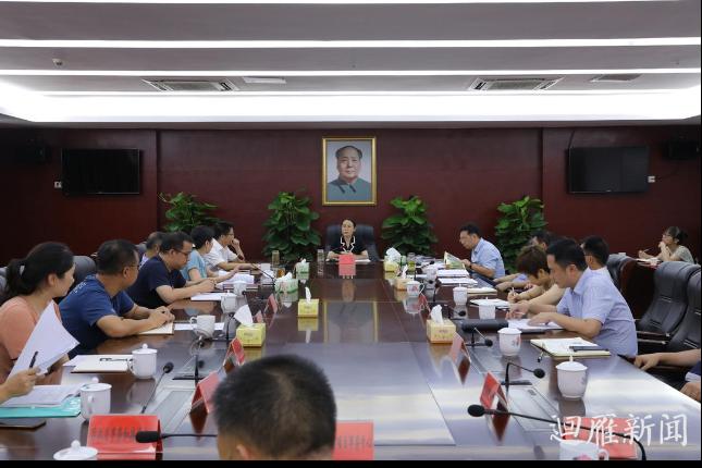 王燕专题调度产业项目