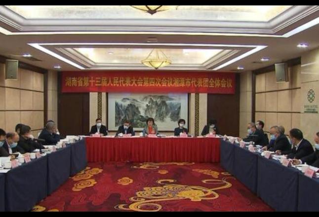 湖南省十三届人大四次会议各代表团审议《政府工作报告》