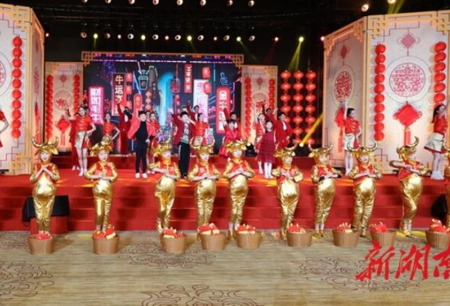 省委省政府举行2021年春节团拜会 许达哲讲话 毛伟明主持
