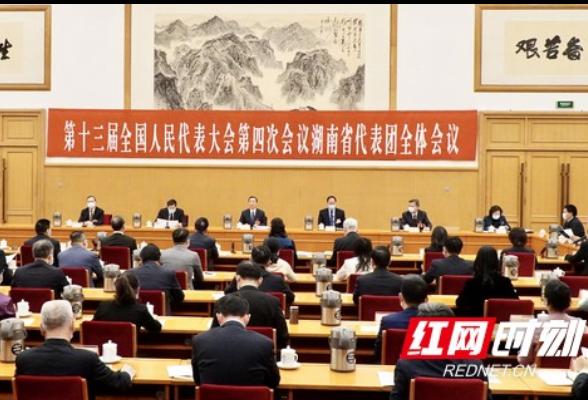 湖南代表团举行第一次全体会议 推选许达哲为团长,毛伟明等为副团长