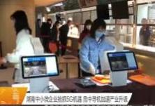 湖南中小微企业抢抓5G机遇 危中寻机加速产业升级