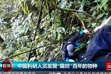 """中国科考人员发现""""隐世""""百年的物种"""
