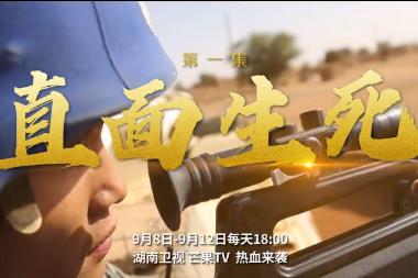 中国第7批赴马里维和警卫分队队长刘勇:仗怎么打,兵就怎么练