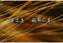 红视频丨《她的力量》第二集《馥郁之美》