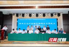 """湘西州""""稳企业保就业""""政银企座谈会举行 签约110.75亿元"""