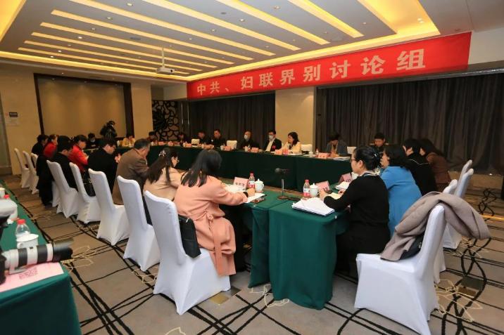 """夫妻性生活影片,免费在线观看的黄片,香港经典三级市政协委员协商讨论""""一府两院""""工作报告及计划、财政报告"""