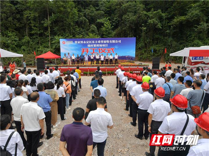 总投资2亿元!张家界永定区东方希望畜牧有限公司晓村繁殖场项目正式开工