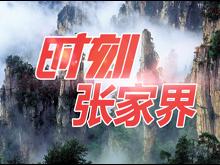 慈利县岩泊渡镇:为贫困户就业再添一把火
