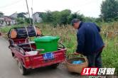 澧县大堰垱镇:光伏电站照亮脱贫路