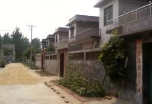 若无房屋 宅基地可被收回