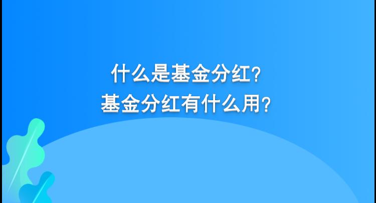 掘金2021⑧ 当基金分红时,选现金分红or分红再投资?