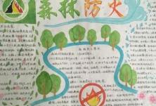 长沙市林业局开展森林防火进学校课堂活动