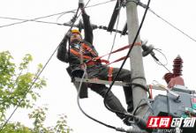 国网泸溪县供电公司完成10千伏小章线集中检修任务