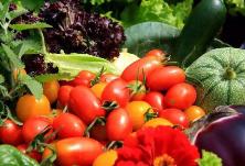 涨知识丨食用农产品与食品如何区分?