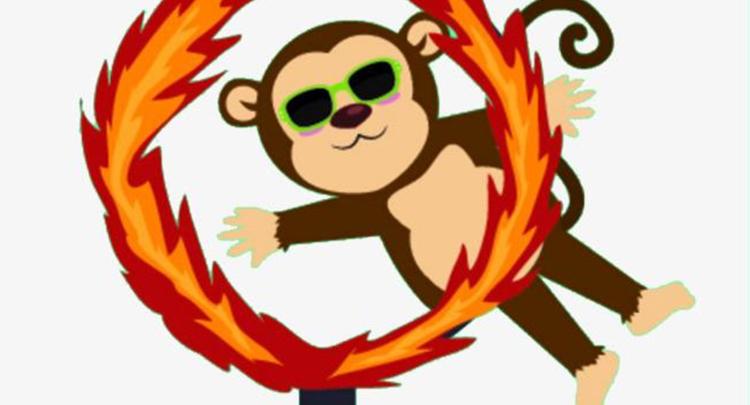 """给猴子表演个魔术 结果遇到""""捧场王"""""""