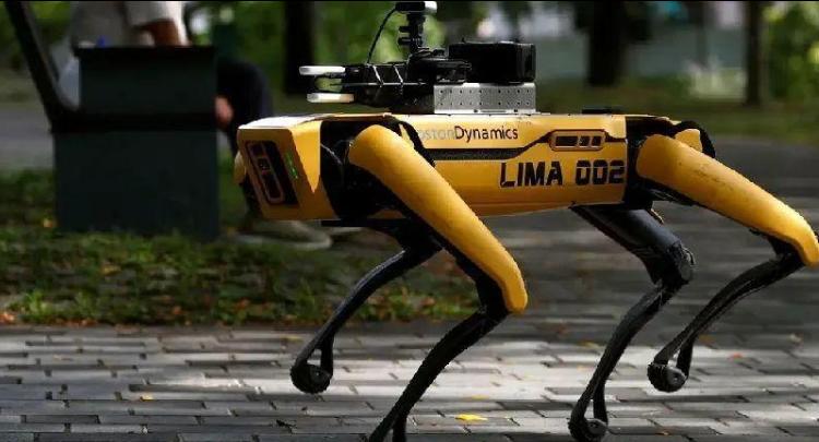 波士顿动力机器狗又添新技能:跳绳、种花、画画