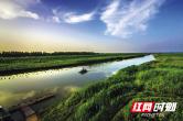尹亚鹏:着力生态安全,健全湖南水网保障体系