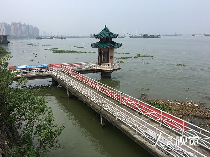 2020年7月30日,湖南岳阳,当日5时,长江水利委员会水文局城陵矶(七里山)水文站退出保证水位(34.55米),正缓慢下降。