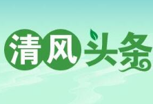 清风头条 澧县涔南镇:加大监督力度,助推形成节俭乡风