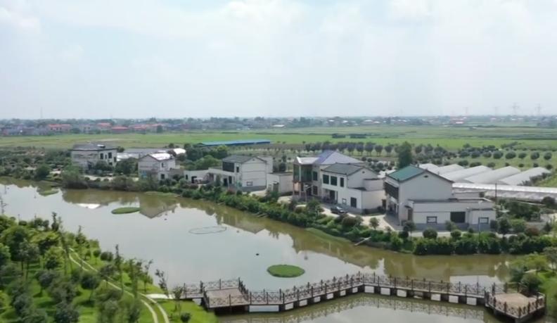 守护一江碧水 推动绿色发展 长沙望城湘江村:美好环境带来美丽经济