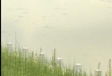湖南将进入雨水集中期 专家提醒:注意防范山洪和地质灾害